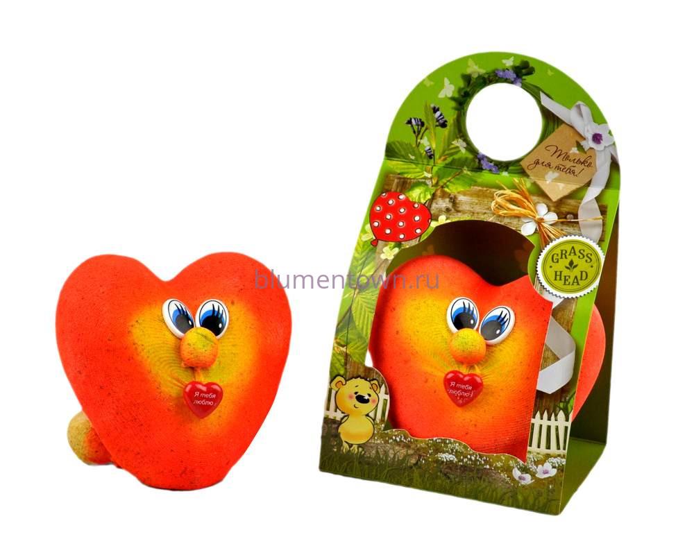 Травянчик  «Сердце» (фото,инструкция,как ухаживать)